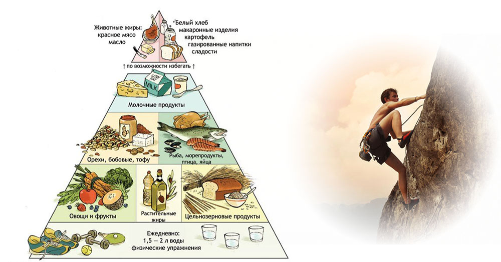 Рекомендации по правильному питанию
